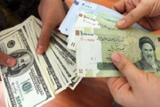 افزایش بیرویه نرخ دلار