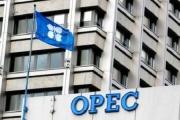 رکوردزنی تولید نفت «اوپک»