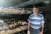 رمز موفقیت کارآفرین شیرازی: اگر خواهان موفقیت هستید منتظر دیگران نمانید