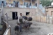 روایت جوان هفسنجانی که از کارگری به کارآفرینی رسید