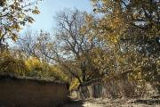 توسعه روستای فاروق مرودشت، هدف کانون کارآفرینی فارس است