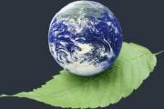 عدم موفقیت صندوق ملی محیط زیست