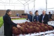 مرکز آموزش عالی امام خمینی(ره) به عنوان کارآفرین برتر کشوری معرفی شد