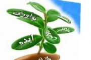 تحلیلگر کارآفرینی فوربس:ایران,غول کارآفرینی