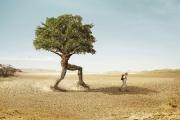 رابطه محیط کار بر خلاقیت