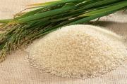 واردات برنج با ۳ شرط آزاد شد