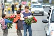برپایی نشست کارآفرینی کودکان کار به منظور دور کردن کودکان از مشاغل کاذب و سخت