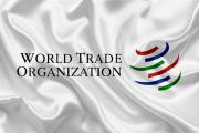 چشم انداز دوساله تجارت جهان
